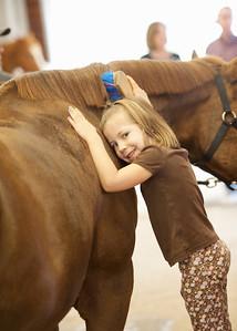 Horse Fun 16