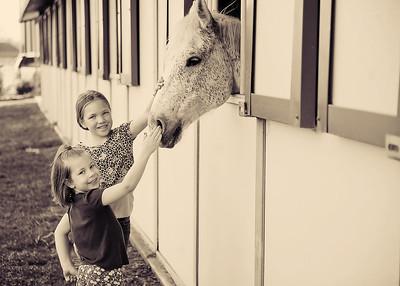 Horse Fun 25
