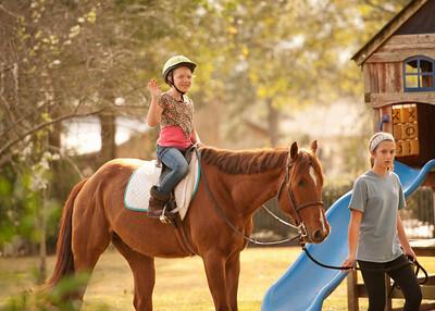 Horse Fun 11