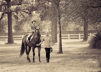 Horse Fun 10