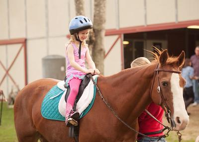 Horse Fun 01