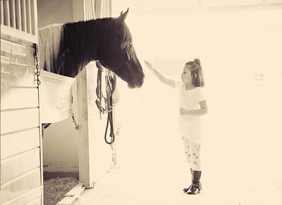 Horse Fun 17