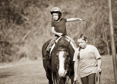 Horse Fun 12