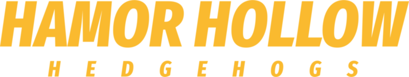 hamor-hollow-hedgehogs-logo-stacked-test-01-3627