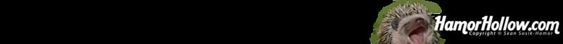 hah-gradient-bar-02-100