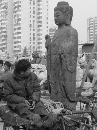 Buddha Surprise