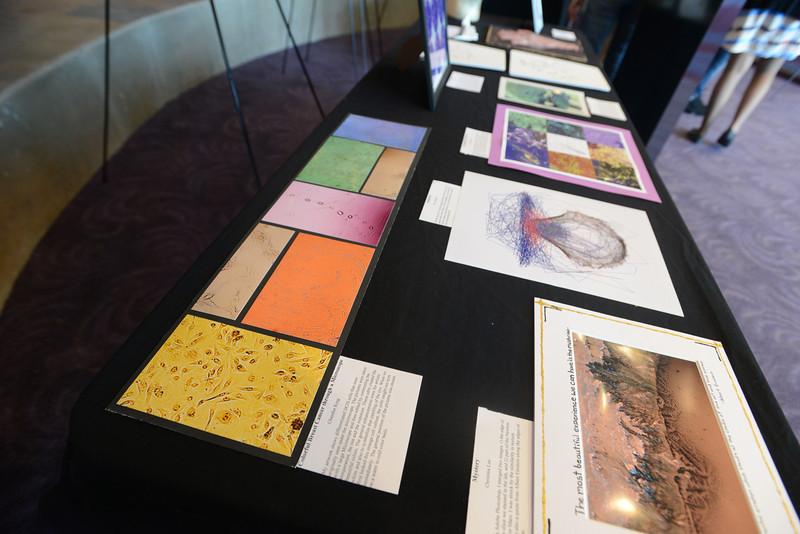 Artwork from Aspiring Scientists Summer Internship Program