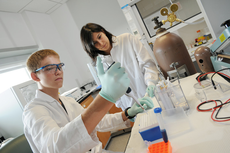 Local high school students participate in the Aspiring Scientists Summer Internship Program on the Prince William Campus.
