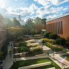 Fairfax Campus Fall