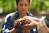 Students of the Smithsonian-Mason Semester for Conservation Studies program hold a box turtle as they participate in an urban wildlife conservation field trip to Rock Creek Park in Washington DC. Photo by Alexis Glenn