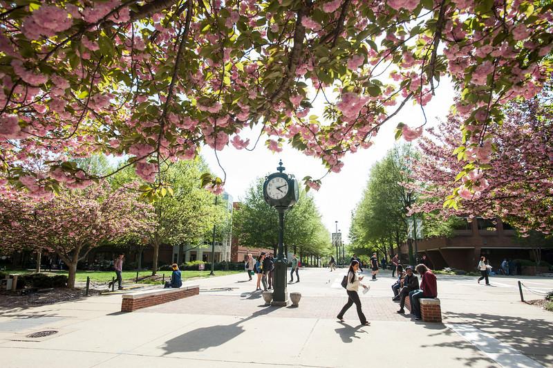 Spring at Fairfax campus
