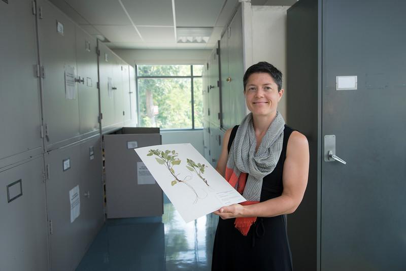 Andrea Weeks NSF grant
