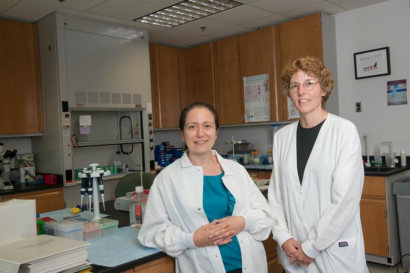 Alessandra Luchini 3-D protein model