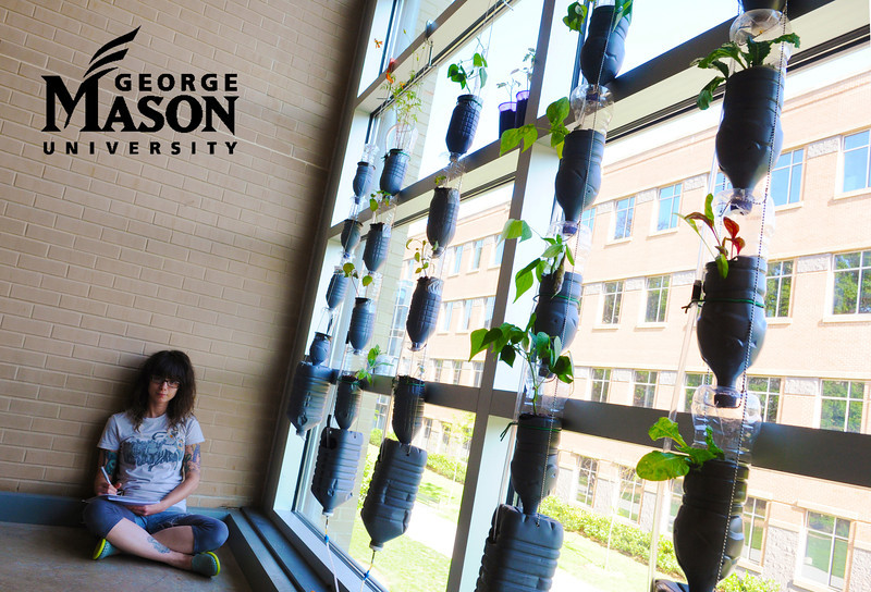 Art History student April Lyons' Windowfarm provides a simple approach to sustainable farming. Photo by Evan Cantwell/Creative Services/George Mason University