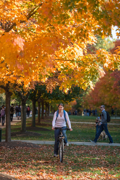 A student rides her bike near the fall leaves changing colors during autumn at Fairfax campus. Photo by Alexis Glenn/Creative Services/George Mason University