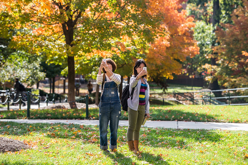 Students use their cell phones to photograph the fall leaves at Fairfax campus. Photo by Alexis Glenn/Creative Services/George Mason University