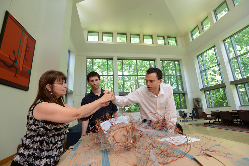 (L to R) Alice Quatrochi, Todd Gillette and Giorgio Ascoli work on a collaborative SofAlab sculpture representing the mammalian brain funded by the Center for Consciousness and Transformation.