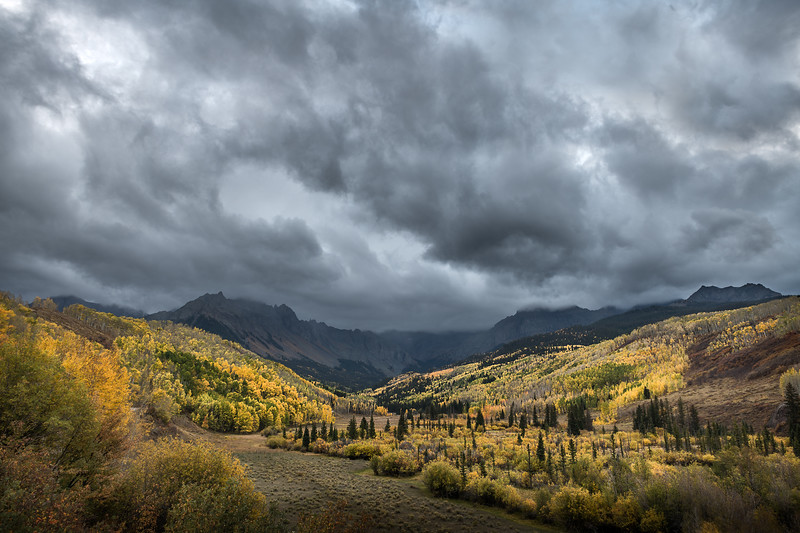 Stormy clouds above a sea of autumn gold in Colorado