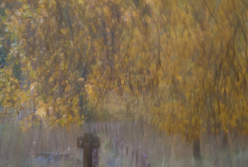 The Pastle Colors of Autumn