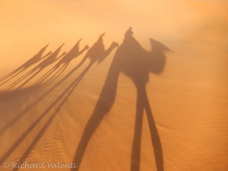 A Shadow of Themselves