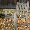 Fall Leaves & Chair - Grafton, VT