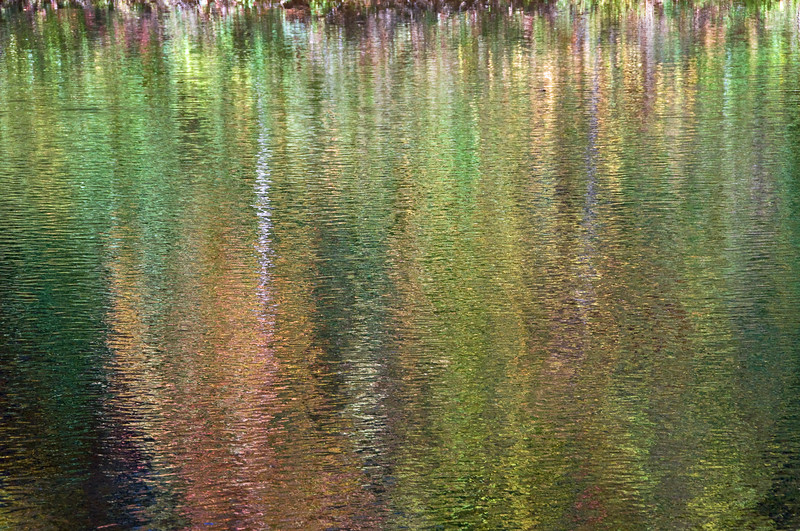 Reflections on a Pond - Grafton, VT
