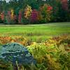 Roadside field - Hwy 109 - Moultonboro, NH
