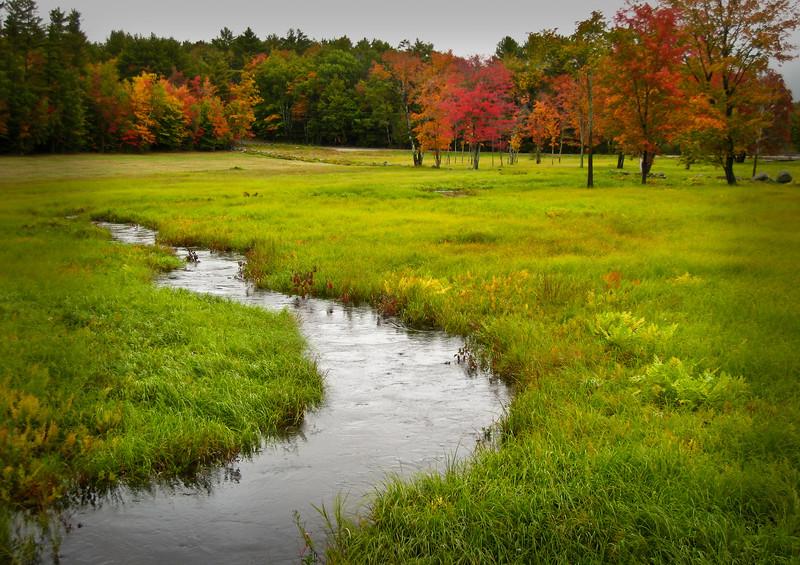 Meandering Creek in Field - Hwy 109 - Moultonboro, NH