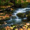 Running Brook - Stratton Arlington Road - Green Mountain National Park, VT