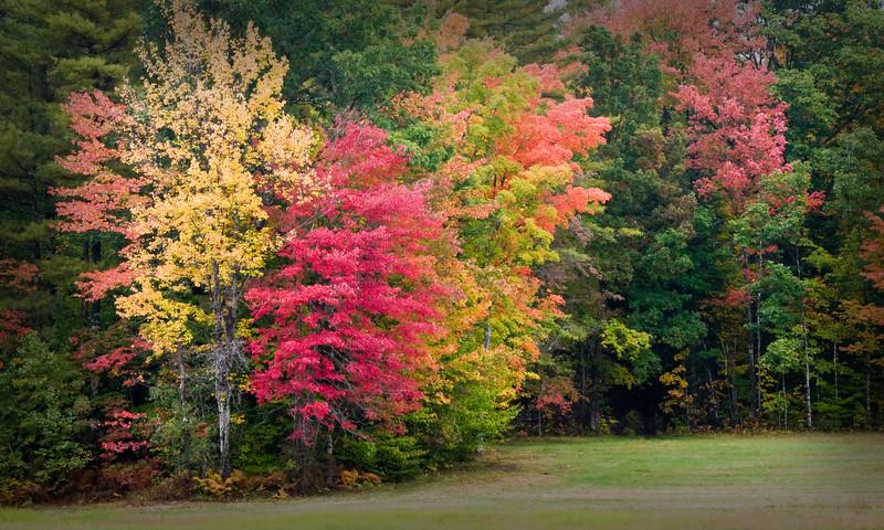 Road side color - Hwy 109 - Moultonborough, NH