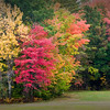 Road side color - Hwy 109 - Moultonborough, NH