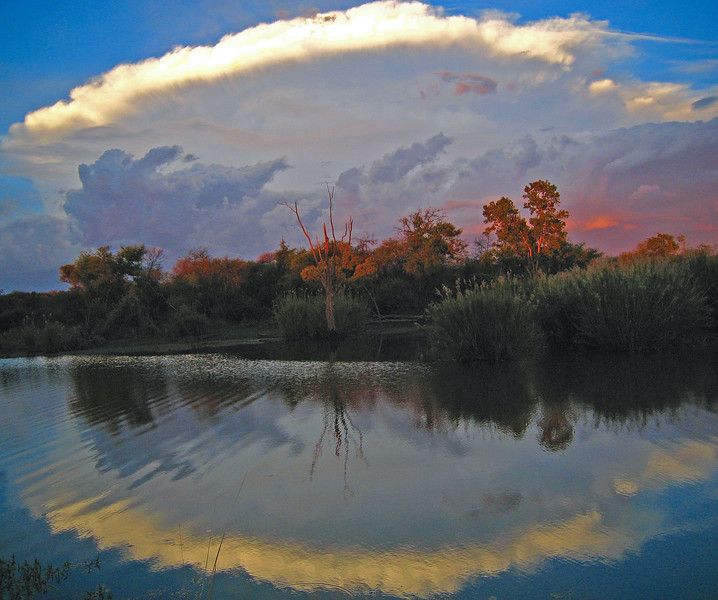 Billowing Cloud over Marataba, South Africa