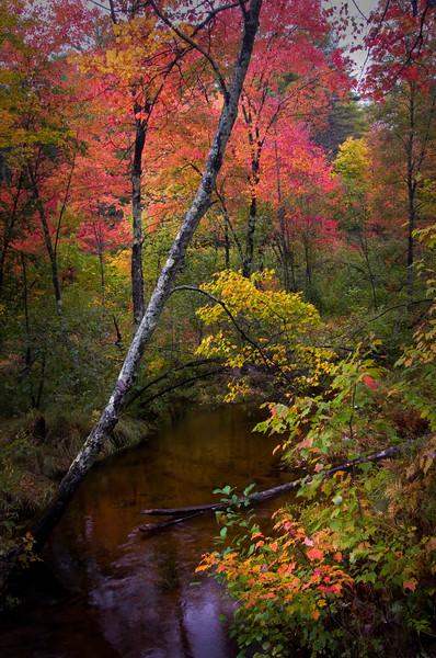Creek color - Hwy 109 - near Melvin Village, NH