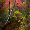 Creek color - Hwy 109 - near Melvin Village, NH