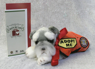 Maddie's Pet Adoption Certificate - 2006-11-21
