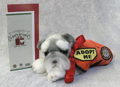 Maddie's Pet Adoption Certificate - 2006-11-21