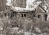 Log House 3