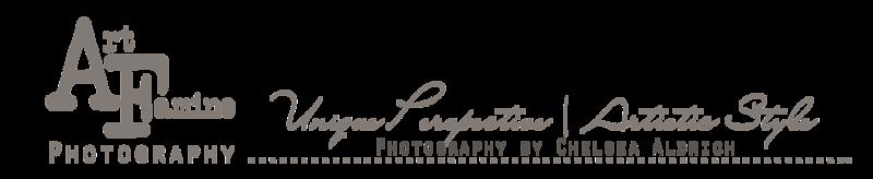 art famine photography banner- Smugmug- dark