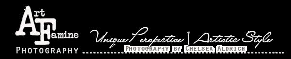 art famine photography banner- Smugmug