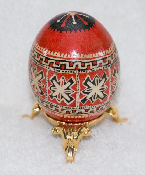eggs-02911