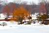 winter fantasy<br /> Chicago Botanic Garden