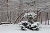 winter scenes Highland Park, IL