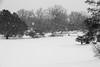snowfall, heartland, USA
