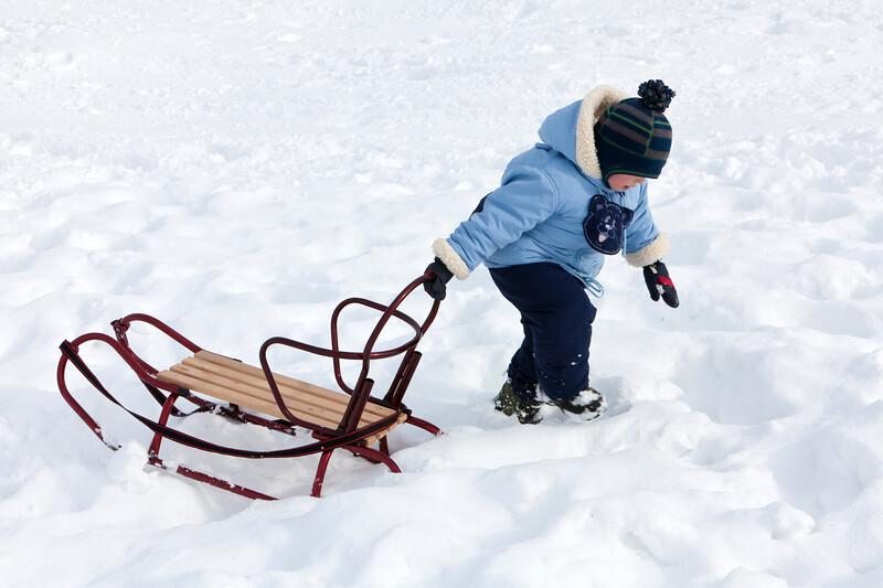 Illinois Winter Fun