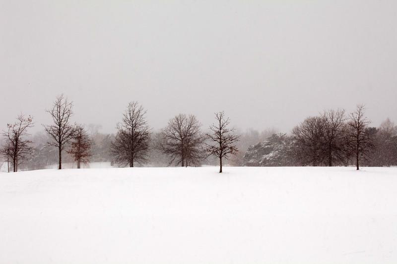 Snow in Highland Park