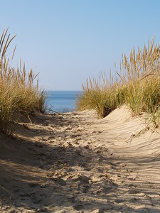 Walk carefully through the paths - some led to the bottom of the massive dune.
