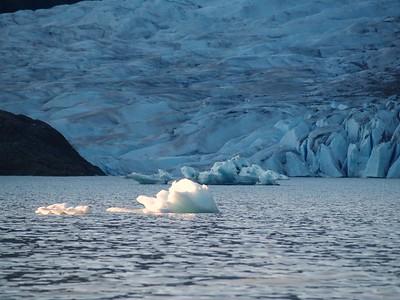 Icebergs - Mendenhall Glacier; Juneau, Alaska