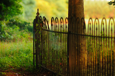 I love this little cemetery.  I love the way the trees and shadows capture the evening light.  It's such a peaceful place.  I'm going to share some of the unique images with you this week.  I hope you come to appreciate it as much as I do.  Leroy, Alabama