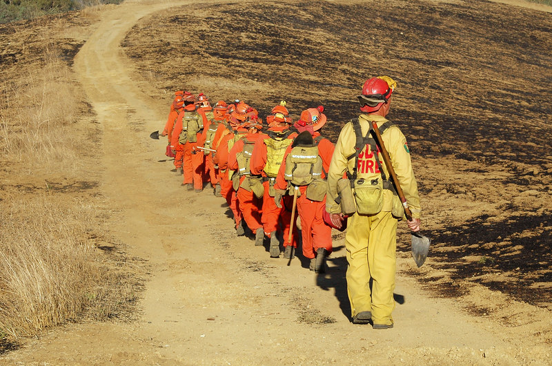 Inmates are lead down a path to clear brush and work the fire line.  Sequoia Fire.  Simi Valley, CA 2007
