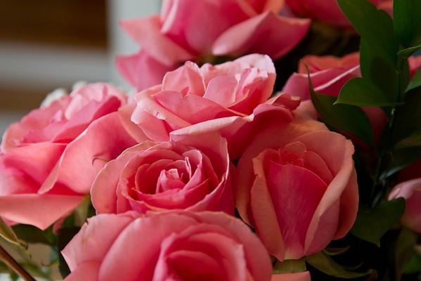 16 Roses
